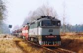 09.02.2001 - Petr Zgut